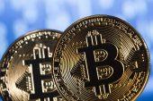 'Google'da Bitcoin'in aranması Trump'ın aranmasından daha fazla'