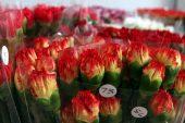 Çiçekçilerin 2019 ihracat hedefi 125 milyon dolar.