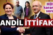CHP, HDP, İyi Parti ve Saadet Partisi ittifakında rezalet!