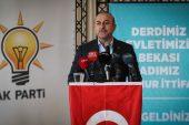Dışişleri Bakanı Çavuşoğlu: Tanzim satış yerleri çiftçinin ve tüketicinin hakkını koruyacak.