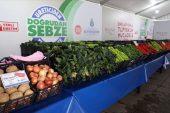 Tanzim satışa 14 bin ton meyve ve sebze sağlandı.