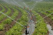 Şubat ayı tarım ÜFE verileri açıklandı.