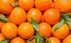 Portakal baba!