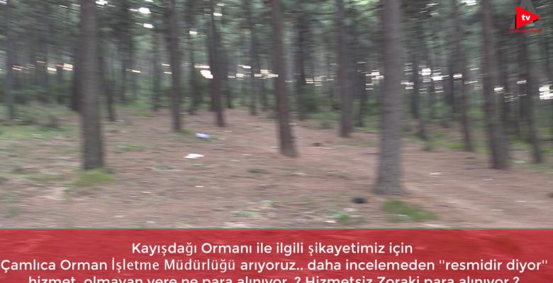 """""""DELİ DUMRUL"""" MESİRE VE PİKNİK ALANI"""