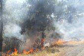 Silifke'de orman yangını